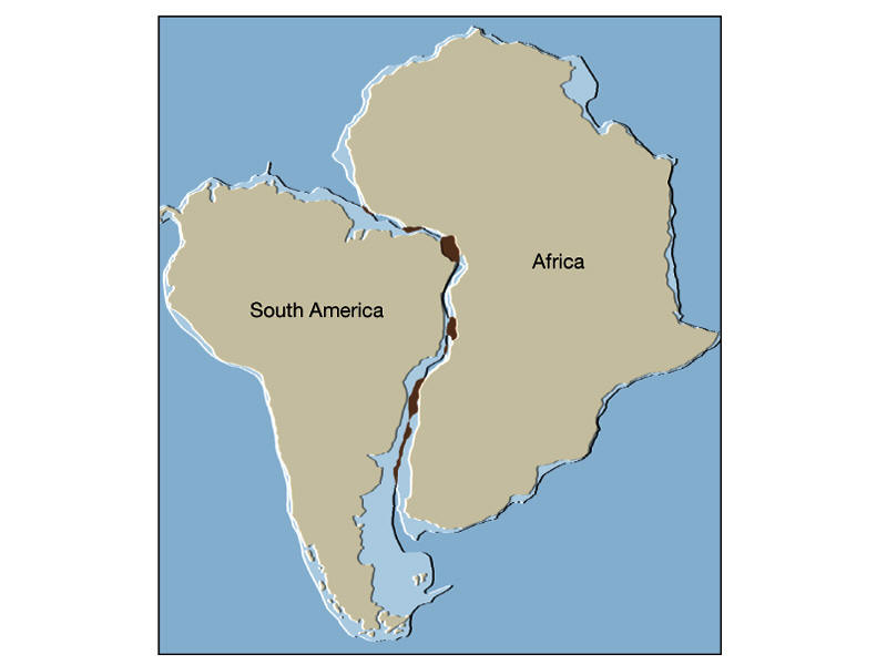 south africa and brazil relationship with us